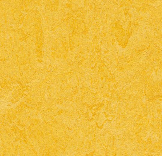 Lemon Zest 333251
