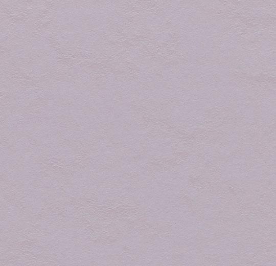 Lilac 333363