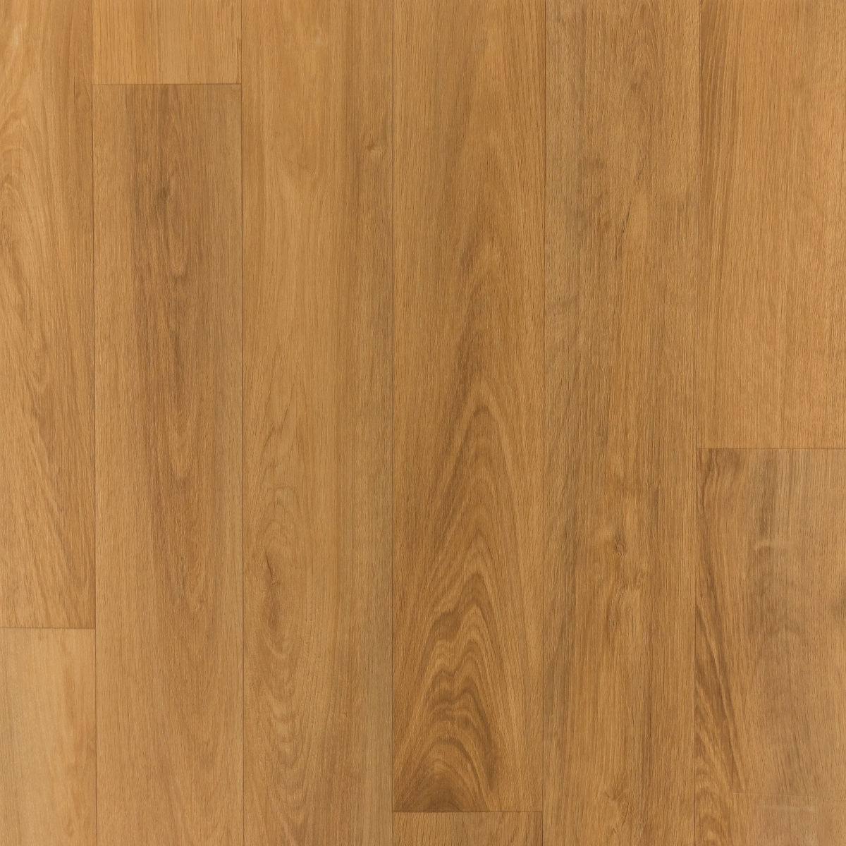 Noblesse French Oak Medium Beige 006