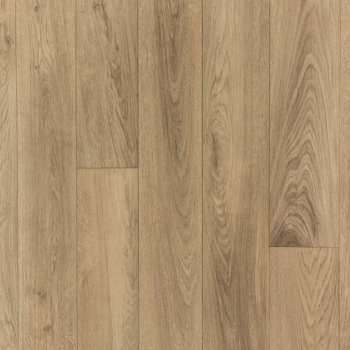 Noblesse French Oak Beige 082