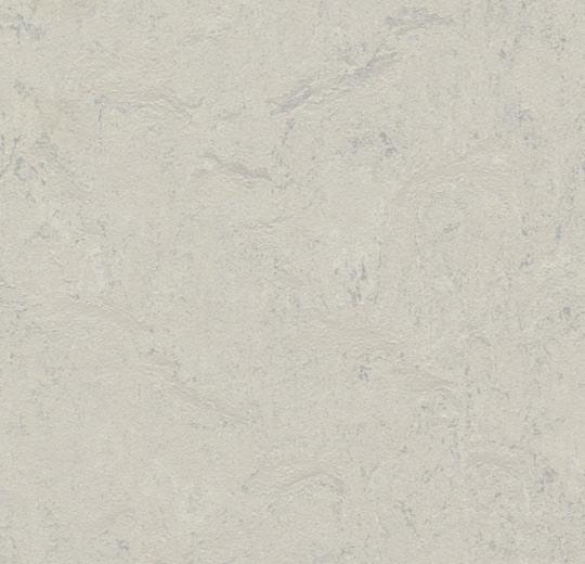 Silver Shadow 333860