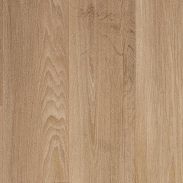 Solid 270 - Modern Woods - Toronto 631