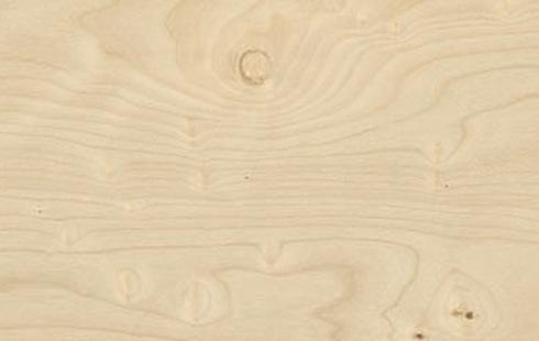 Printcork Apple Birch