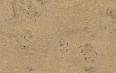 Printcork Oak Burl